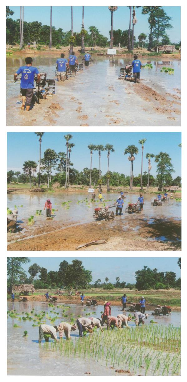 All/activity/ActiondeNorodomSihanouk/2010/Decembre/id374/photo006.jpg